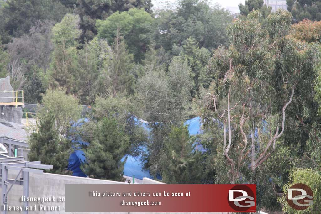 05.11.18 - A blue tarp visible through the trees, assumingn they are applying concrete or paint to the rock work and this is to protect the trees.