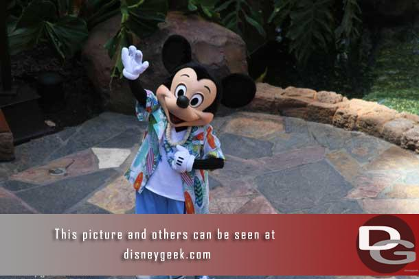 Let us start off with Mickey he was out every day, several times a day.  In this picture near the Olelo Room.